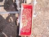 photos of Corn Seeder