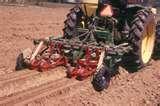 Vegetable Seeders photos