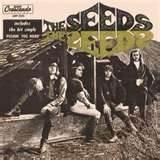 The Seeds Band photos
