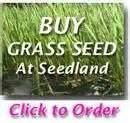 images of Seeders Disease