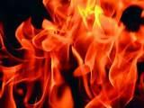 Seeders Fire
