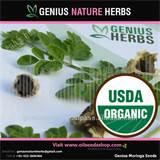 Seeds Manufacturer pictures