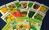 Seeds Vegetable Garden pictures