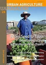 pictures of Seed Agriculture